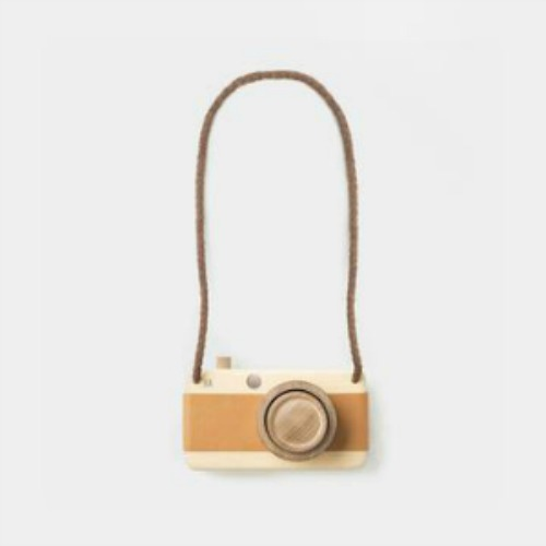 Plyroom Wooden Camera Eco and Us